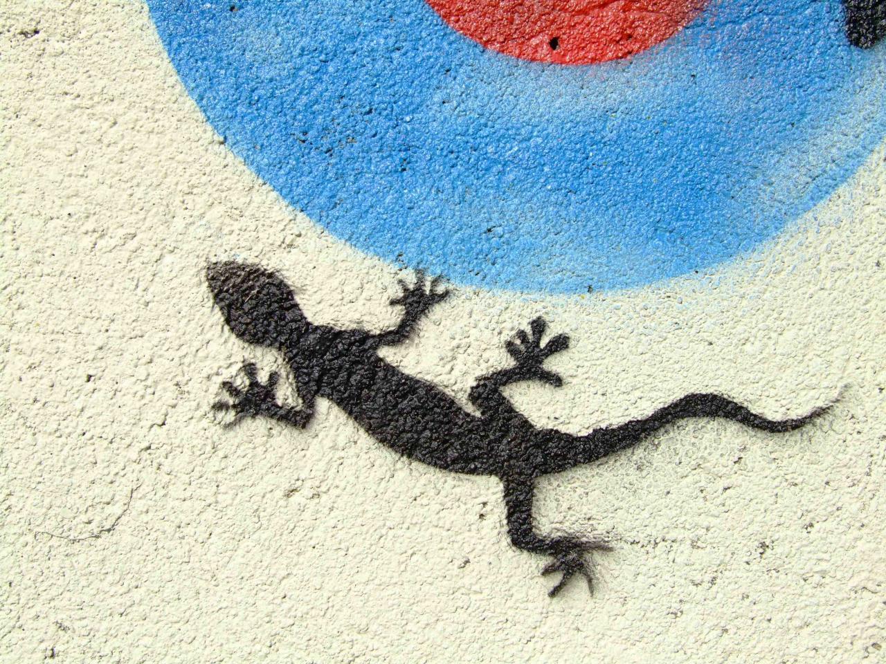 Gecko - Etampes 2004